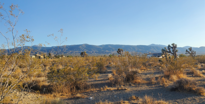 2.25 Acre Vacant Lot With Amazing Mountain Views